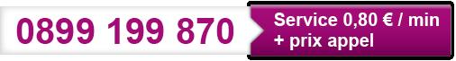 Audiotel 137